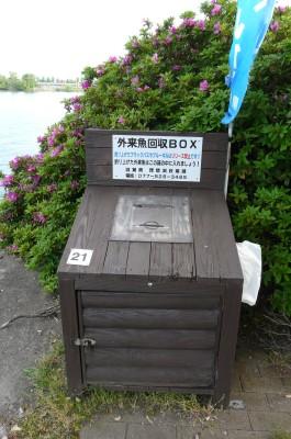 琵琶湖2 5.6.jpg