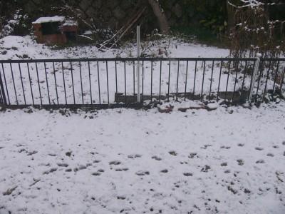 雪 1.14.JPG