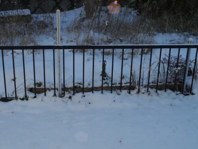 雪 1.26.JPG