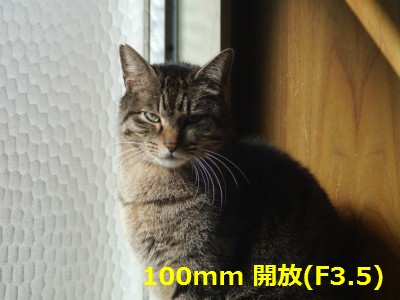 RIKENON70-150-2.JPG