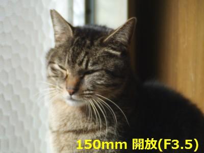 RIKENON70-150-3.JPG