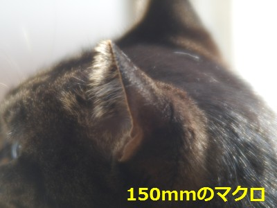 RIKENON70-150macro-2.JPG
