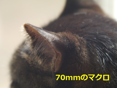 RIKENON70-150macro-4.JPG