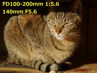 140mm f5.6 1.24.JPG