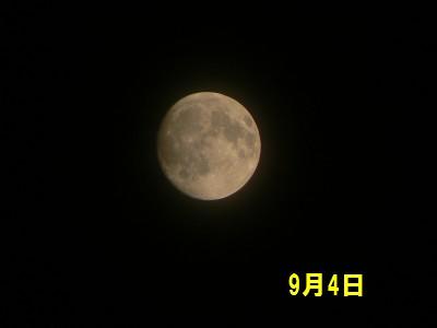 9月4日の月 9.5.JPG