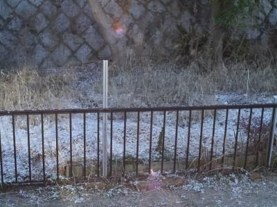 雪 2.6.JPG