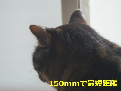 RIKENON70-150macro-1.JPG