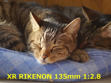 RIKENON135 1.16.JPG